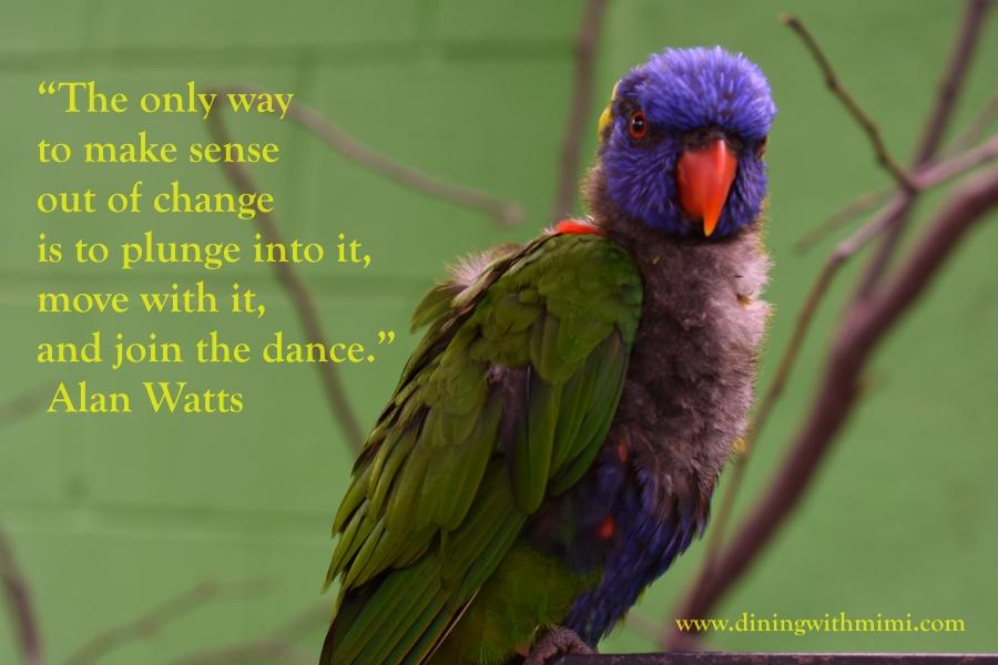March 2020 Hoda wan Kenobi Quotes I love www.diningwithmimi.com