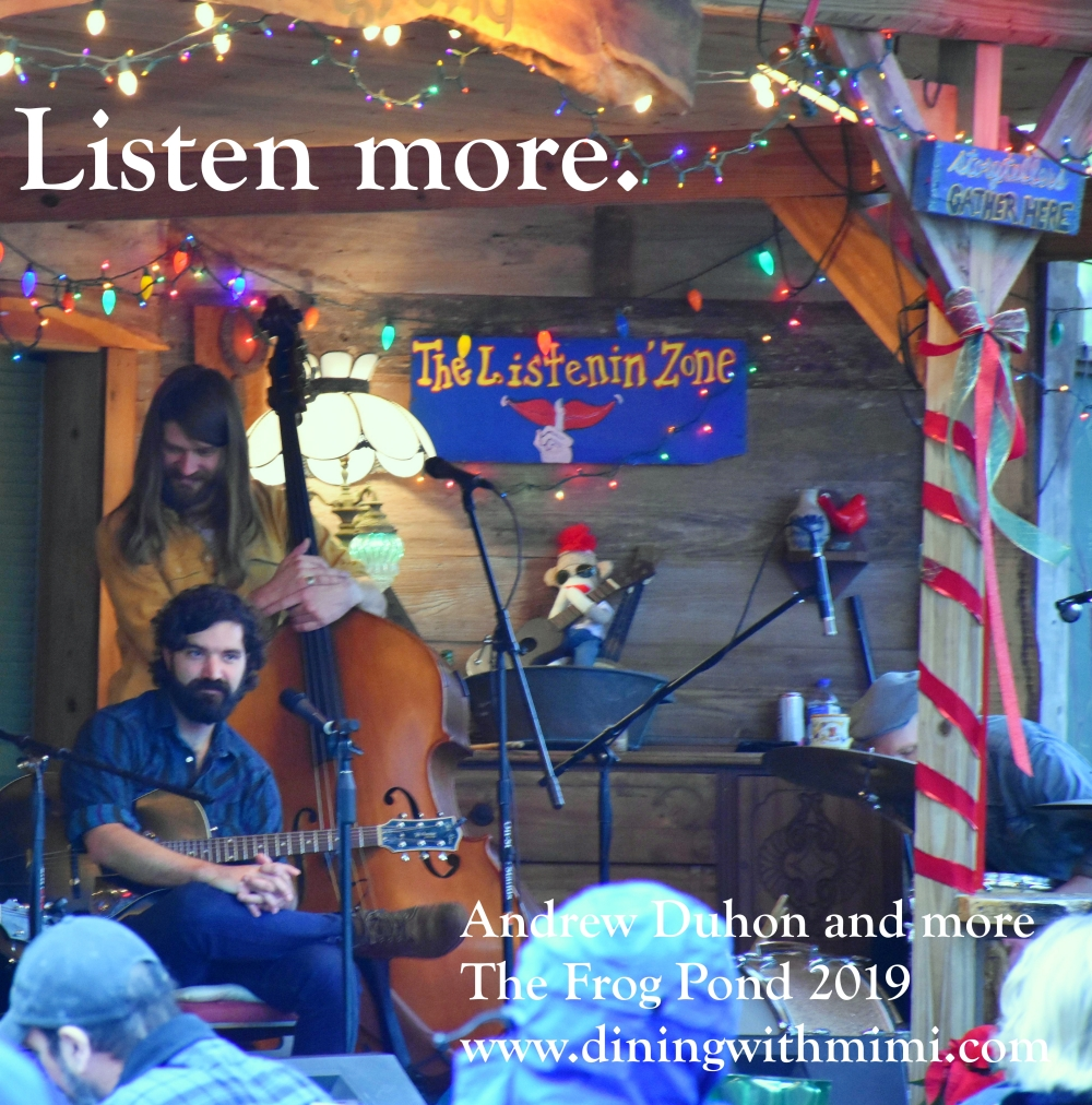 Photo Musician Andrew Duhon playing The Listening Zone on Blue Moon Farm at The Frog Pond