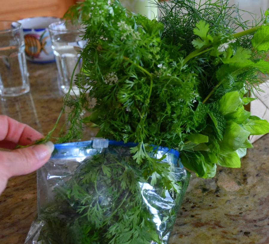 Ziplock herbs for Island cooking www.diningwithmimi.com